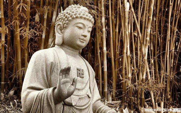 Bạn là người có duyên vwois Phật nếu hội tụ 10 điều này.
