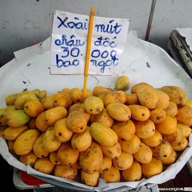 """Xoài """"nilon"""" bày bán ở chợ Đakao, Q.1 và chợ Bà Chiểu, Q.Bình Thạnh"""